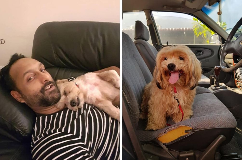 #MYHero: Man Rescues Dog Abandoned During MCO In Ipoh, They're Now Buddies For Life