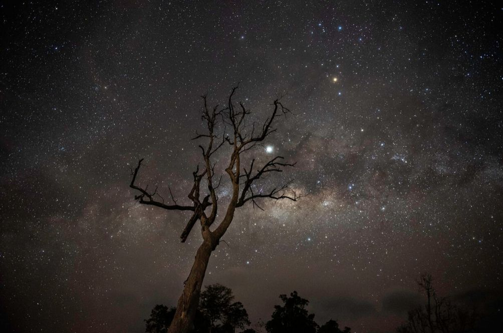 [PHOTOS] Starry-Eyed: Photographers Capture Stunning Photos Of The Sabah Night Sky