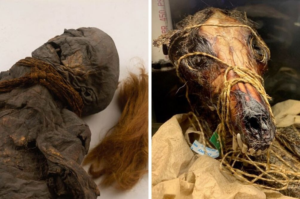 Museums Around The World Are Posting Photos Of Their Creepiest Possessions
