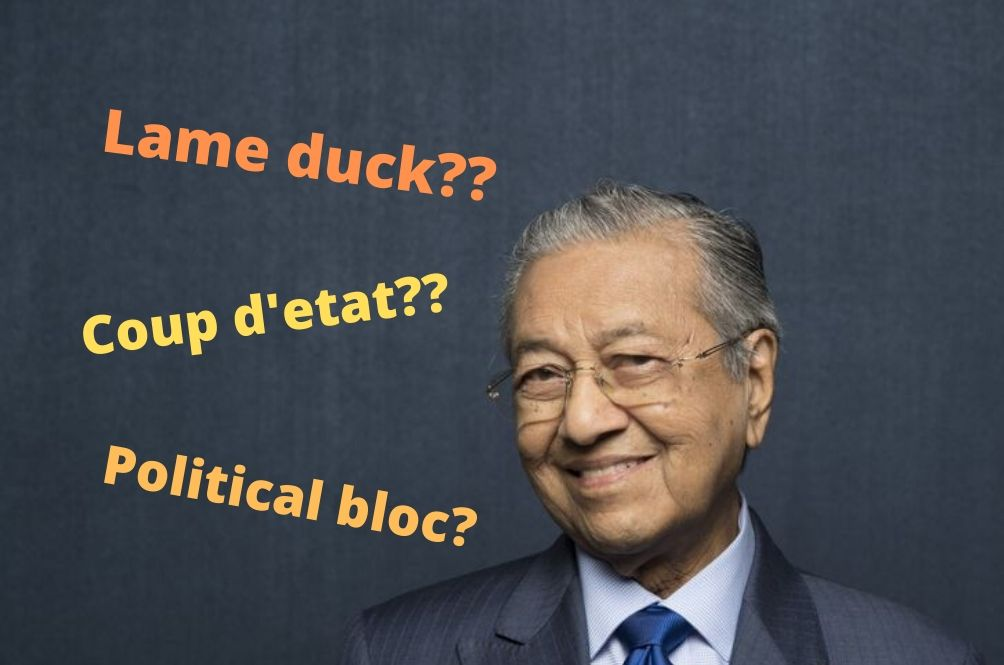 What Do Lame Ducks Have To Do With Politics? Political Jargons Explained