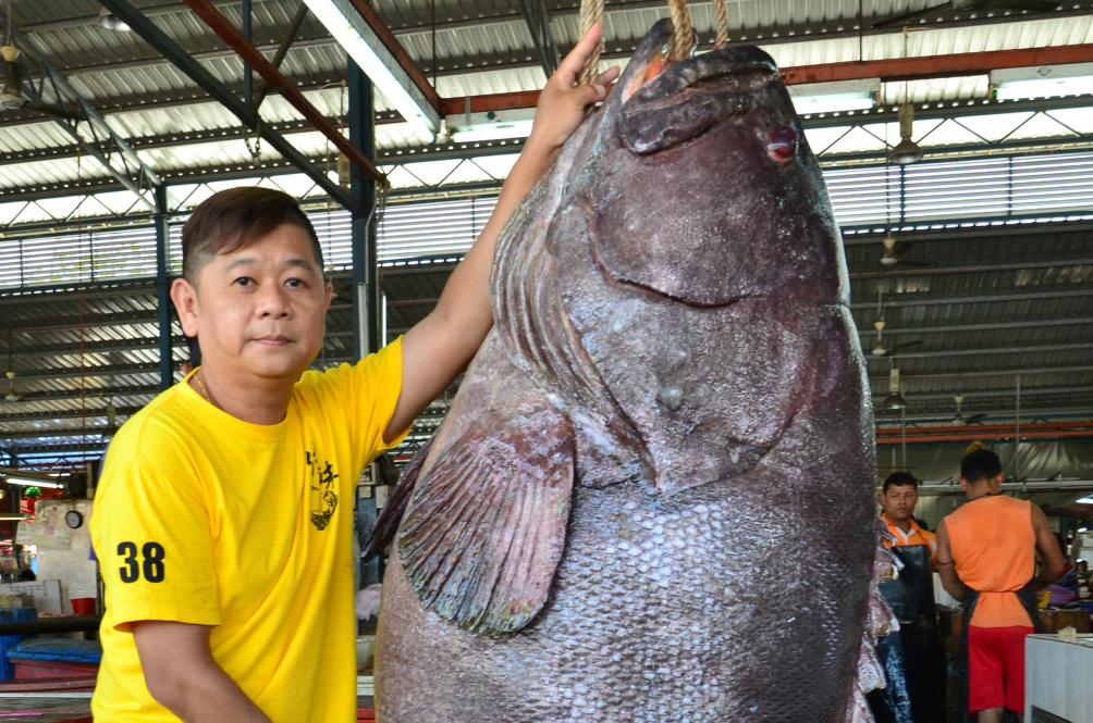 This Seafood Restaurant Owner Wants You To Eat His RM7,500 Grouper