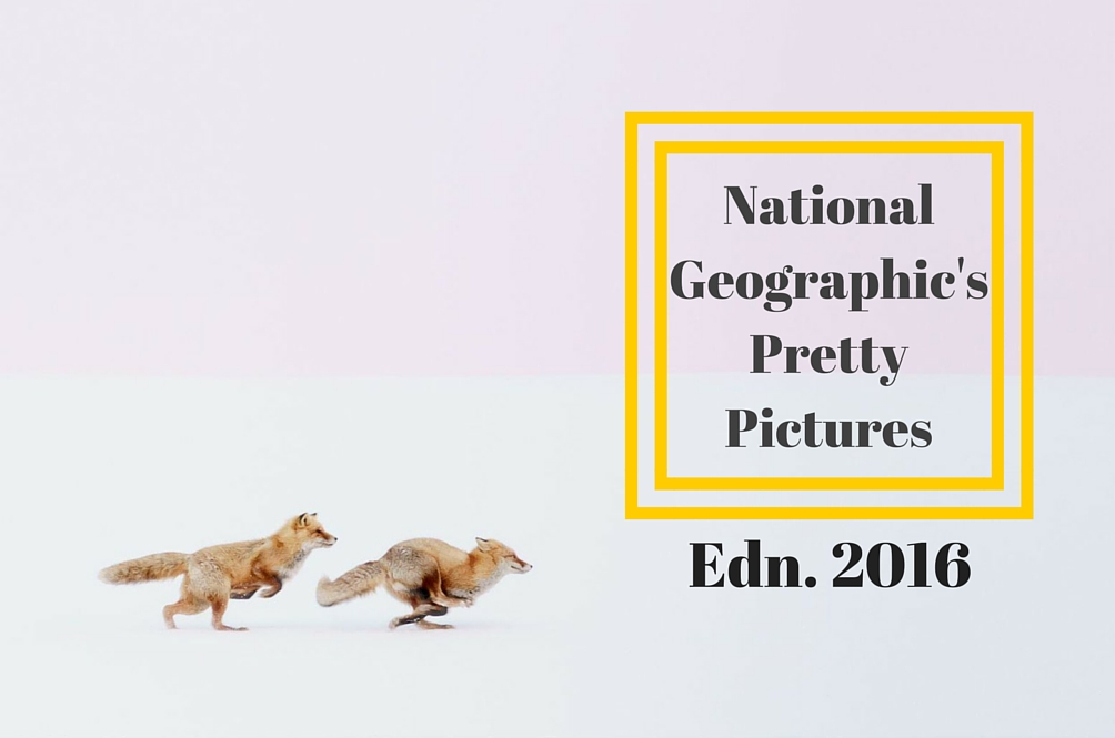 The Nat Geo Travel Photographer Contest Is Back