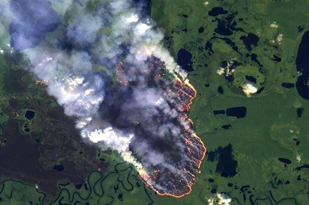 The Amazon Forest Is On Fire And The Whole World Will Suffer The Consequences