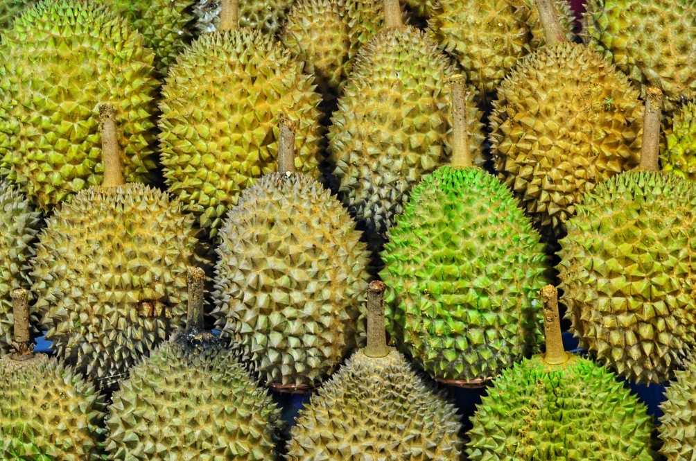 A Thorny Issue: Durian Causes Evacuation In Australian University