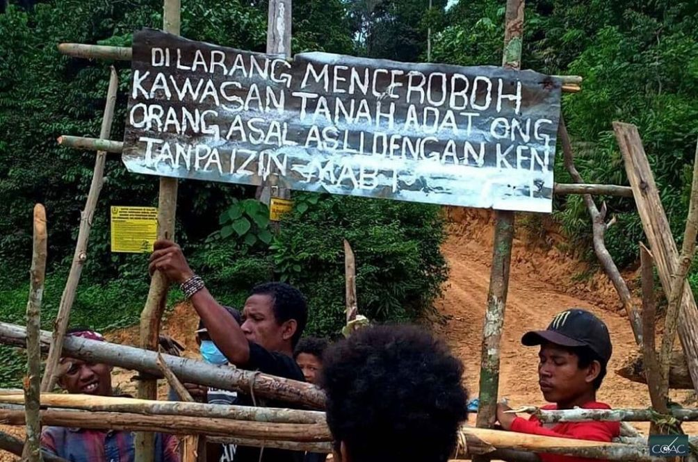 Orang Asli Lands Are Threatened By Loggers Again. Will This Ever End?