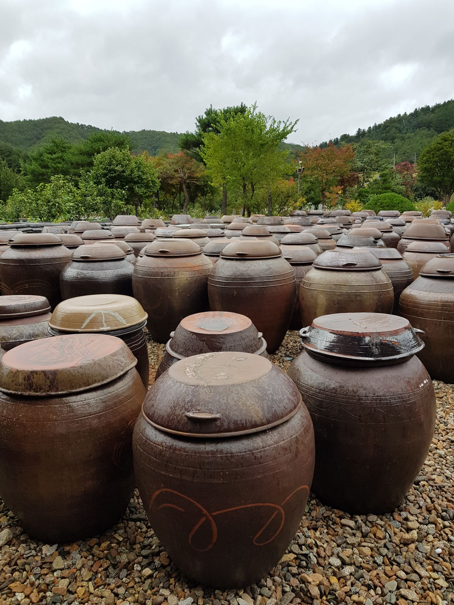 These pots are filled with fermented food, which often take months, if not years to be ready for consumption