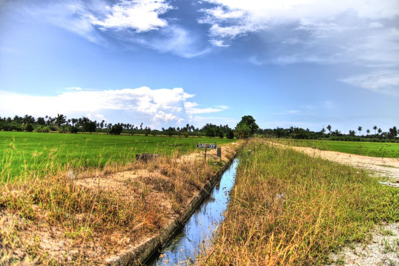 From paddy fields to beaches, Balik Pulau has it all