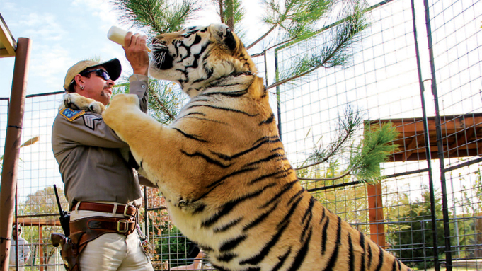 Joe Exotic feeding one of his big cats