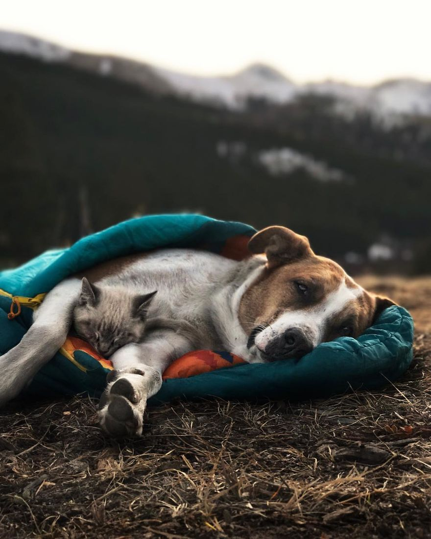Sharing the same sleeping bag.
