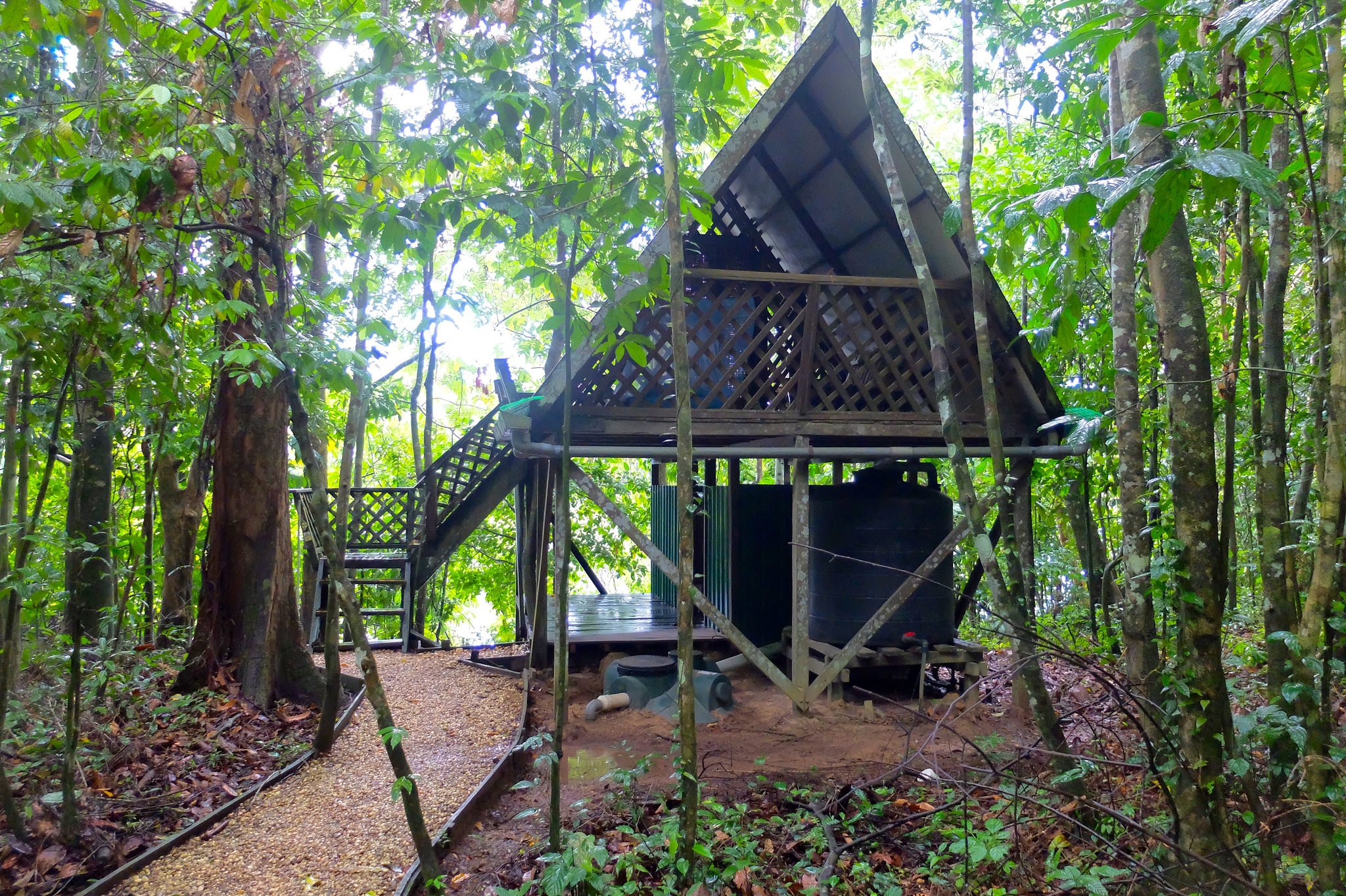 An eco-camp at the heart of Borneo Rainforest.