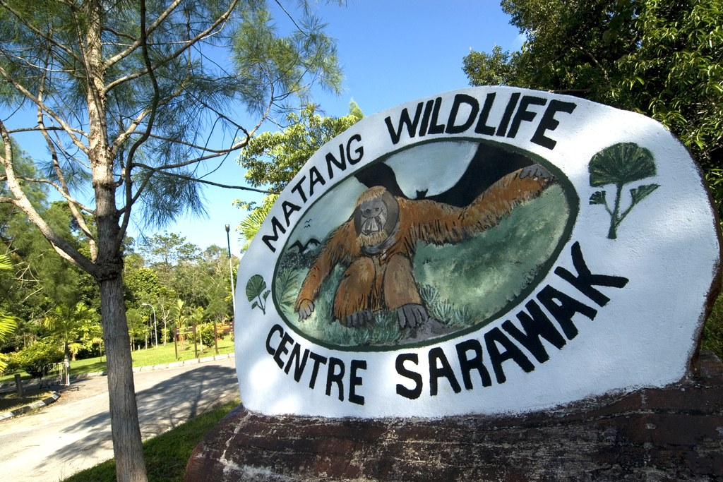 The Matang Wildlife Center.